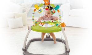 ac1245b9a Sassy Seat Doorway Jumper Review